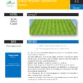 Cycle d'entrainement de foot pour les seniors - travailler les transitions